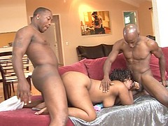 Download Pussy Cat free movie